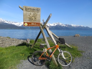 At the historic Idihato Trail ...against the backdrop of the Chugach Mountains